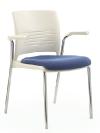 COS Destiny Chair wArms_DI