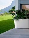 Living Green Planta_MDE