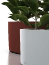 Living Green Planta Sizes_MDE